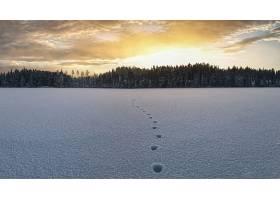 地球,冬天的,自然,雪,风景,轨道,壁纸,图片