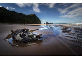 地球,海滩,自然,沙,地平线,浮木,海洋,壁纸,