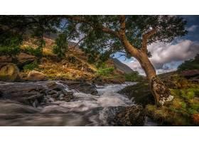 地球,河,自然,树,岩石,壁纸,(1)图片