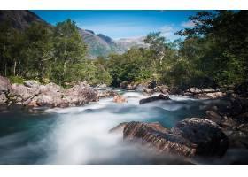 地球,河,自然,树,岩石,壁纸,图片