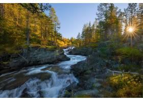 地球,河,自然,树,阳光,森林,壁纸,图片