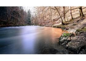 地球,河,自然,森林,壁纸,(1)图片