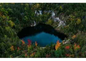 地球,湖,湖,天线,自然,森林,壁纸,