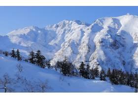 地球,冬天的,雪,山,树,壁纸,图片