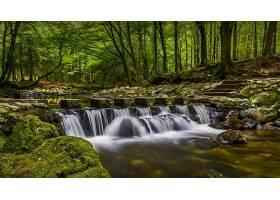地球,河,自然,森林,瀑布,温室,岩石,壁纸,图片