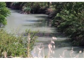 地球,河,自然,水,西班牙,植物,反射,壁纸,(1)图片