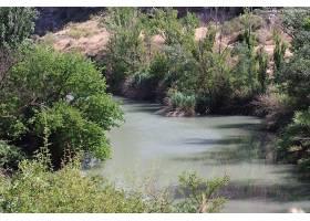 地球,河,自然,水,西班牙,植物,反射,壁纸,图片
