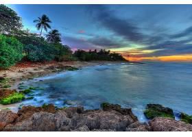地球,海岸线,海岸,热带的,海洋,海,手掌,树,地平线,壁纸,