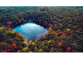 地球,湖,湖,森林,树,秋天,叶子,天线,壁纸,