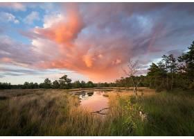 地球,湖,湖,池塘,自然,风景,云,草,壁纸,图片