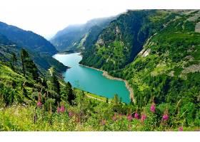 地球,湖,湖,山,风景,花,树,森林,壁纸,