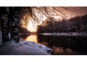 地球,河,自然,雪,冬天的,反射,树,壁纸,图片