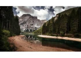 地球,河,自然,风景,山,森林,壁纸,图片