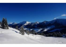 地球,冬天的,雪,树,自然,山,风景优美的,风景,壁纸,图片