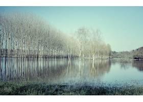 地球,湖,湖,树,风景,自然,反射,壁纸,