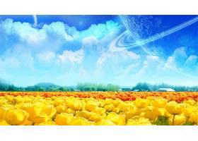 郁金香,花,幻想,领域,行星,云,黄色,花,壁纸,图片