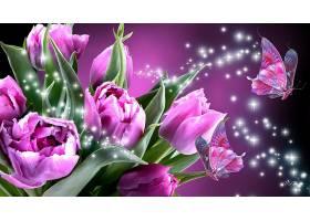 郁金香,花,艺术的,花,蝴蝶,闪耀,紫色,花,壁纸,图片
