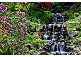 瀑布,瀑布,自然,岩石,花,植物,花园,水,壁纸,图片
