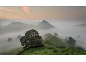 雾,自然,树,山,壁纸,图片