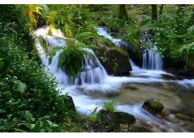 瀑布,瀑布,森林,绿色的,岩石,壁纸,(4)图片