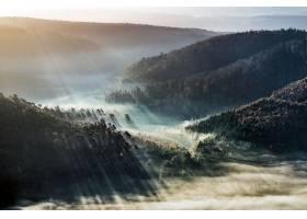 雾,自然,森林,山谷,风景,阳光,壁纸,图片