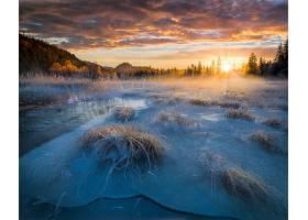 阳光,自然,冬天的,风景,冰冻的,壁纸,图片