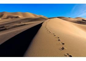 沙漠,自然,沙,沙丘,脚印,壁纸,