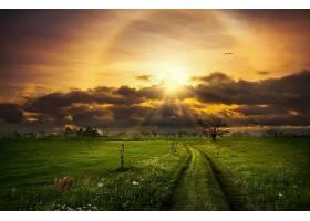 阳光,自然,小路,天空,云,领域,日落,壁纸,图片