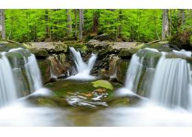 瀑布,瀑布,森林,绿色的,树,岩石,壁纸,(4)图片