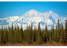 山,山脉,自然,风景,树,壁纸,图片