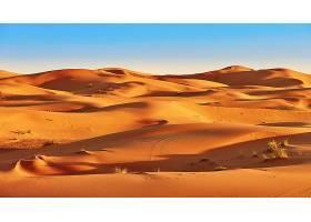 沙漠,自然,沙,沙丘,风景,壁纸,(4)图片