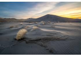 沙漠,自然,沙,风景,沙丘,壁纸,图片