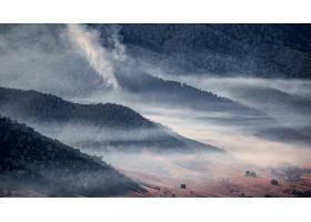 雾,自然,森林,风景,山,壁纸,图片
