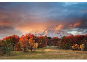 秋天,森林,树,叶子,山,天空,云,日落,壁纸,