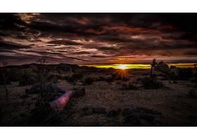 沙漠,自然,风景,云,日出,壁纸,图片