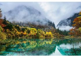 秋天,森林,雾,反射,山,自然,湖,叶子,壁纸,