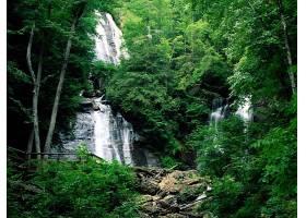 瀑布,瀑布,自然,森林,绿色的,植物,水,壁纸,图片