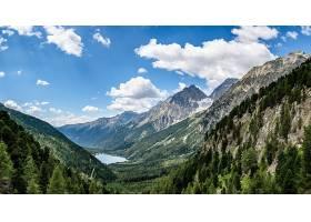 地球,风景,自然,山谷,山,森林,壁纸,图片