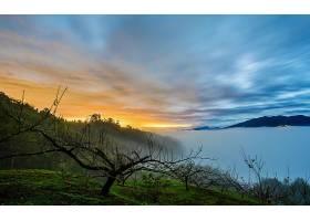雾,自然,风景,云,日出,壁纸,图片