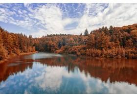 秋天,自然,反射,湖,云,叶子,森林,壁纸,