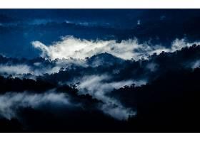雾,自然,风景,壁纸,(2)图片