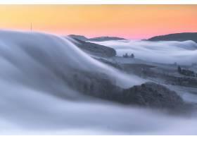 雾,自然,风景,壁纸,图片