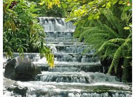 瀑布,瀑布,自然,植物,水,壁纸,(1)图片