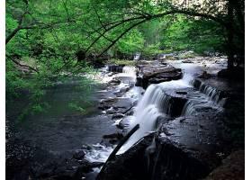 瀑布,瀑布,自然,植物,水,壁纸,(2)图片