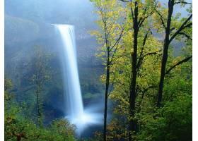 瀑布,瀑布,自然,植物,水,壁纸,(4)图片