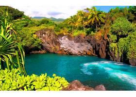 泻湖,手掌,树,热带的,绿松石,蓝色,岩石,布什,壁纸,图片