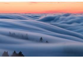 雾,风景,日落,壁纸,图片