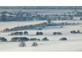 雾,风景,自然,壁纸,(1)图片
