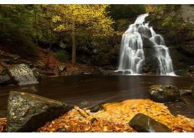 瀑布,瀑布,岩石,森林,树,壁纸,(4)图片