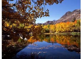 秋天,自然,森林,湖,水,反射,山,叶子,壁纸,